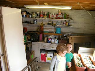 tins of paint and chemicals on garage storehouse shelves