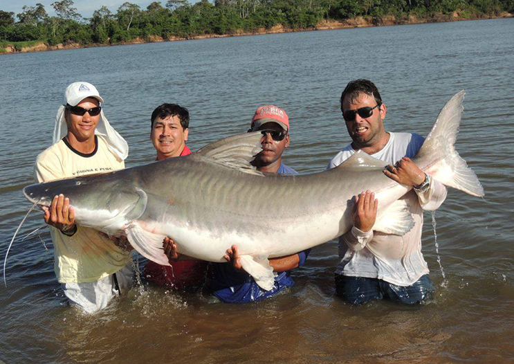 International fishing news italy caught the new world for What is the biggest fish ever caught