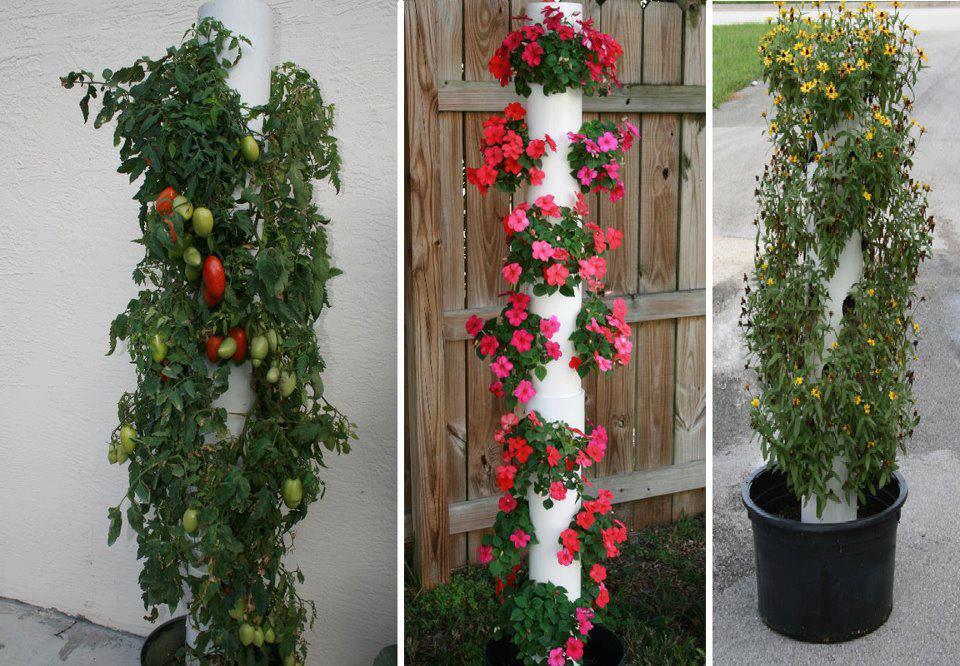 jardim vertical tubo pvc:DIY Vertical Garden PVC Pipe