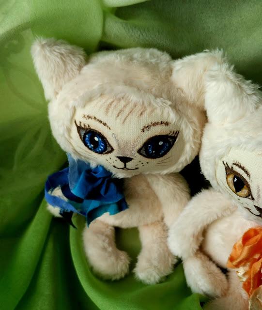котик с синими глазами