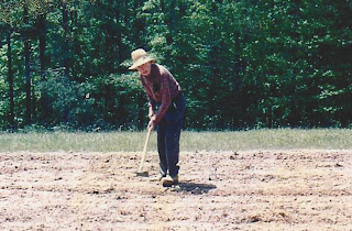 My grandfather (referred to as Papaw) gardening. He was 80 something in this photo.