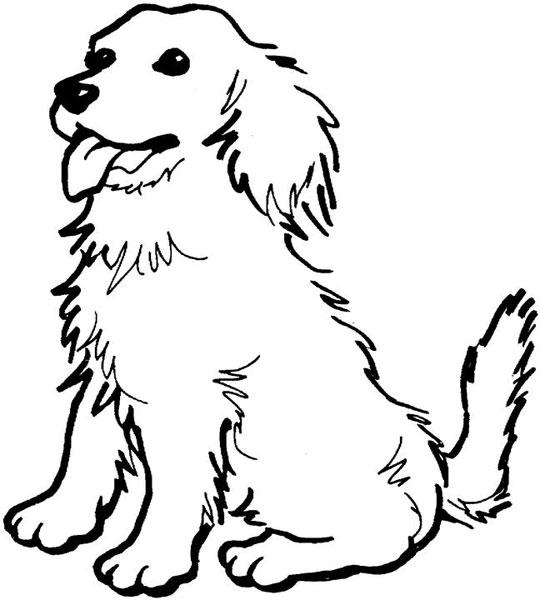 Perro Dibujos Para Colorear | Dibujos Para Colorear Imagen