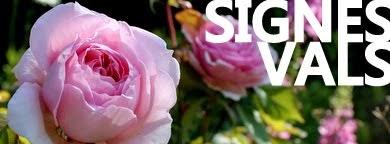 Banner m rose