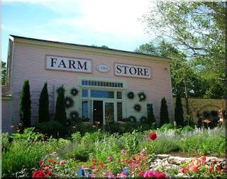 البذور والادوات والمعدات الزراعية