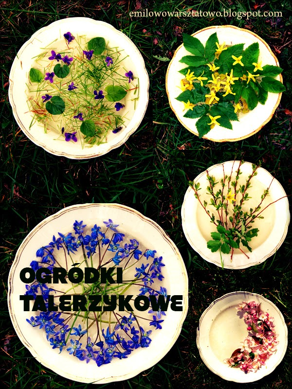 http://emilowowarsztatowo.blogspot.com/2012/04/ogrodki-talerzykowe-wodne.html