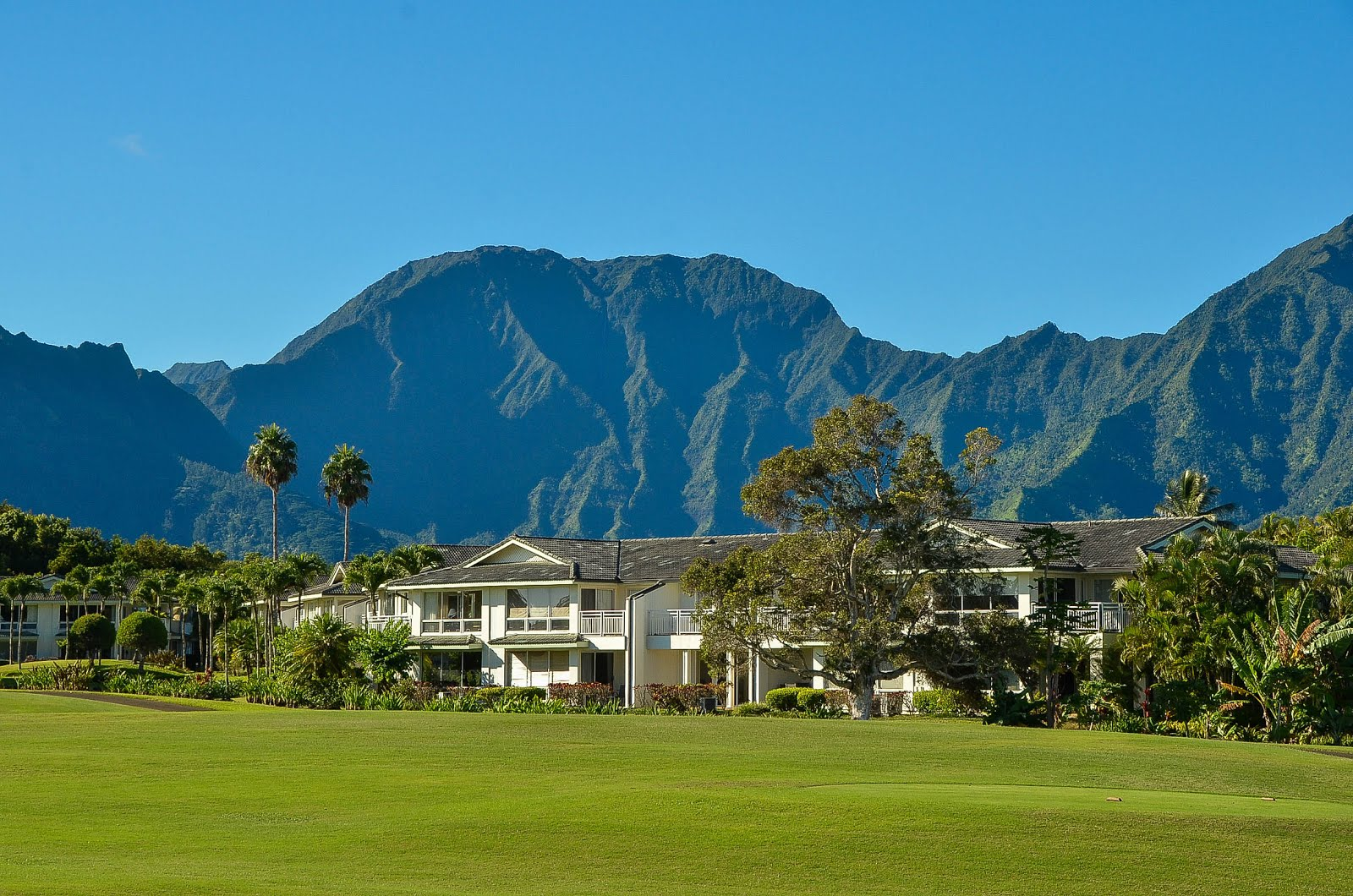 princeville singles Make a restaurant reservation at kauai grill - st regis - hawaii in princeville, hi select date, time, and party size to find a table.