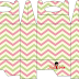 Chevron in Pink and Green Free Printable Lunch Box.
