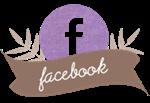 Síguenos en Facebook2