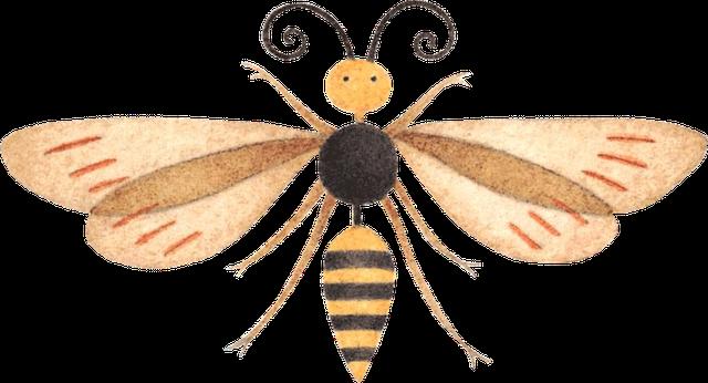 Insectos para imprimir imagenes y dibujos para imprimir - Fotos de insectos para imprimir ...