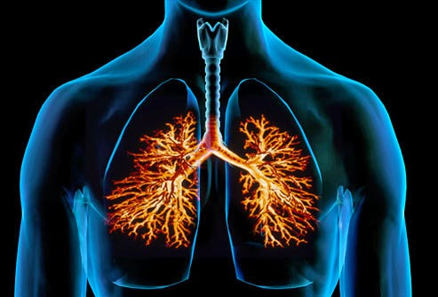 http://phuysiteherbal.blogspot.com/2015/04/pengobatan-herbal-paru-paru-basah.html