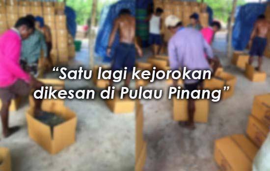 Sekumpulan warga asing pijak ikan bilis di Pulau Pinang?