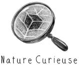 La Box Nature Curieuse de décembre - Box Cuisine, bio, sans gluten et sans lactose