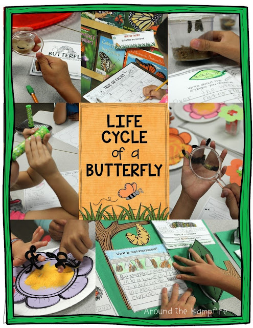 Butterfly Life Cycle Learning Labs & FREE Printables