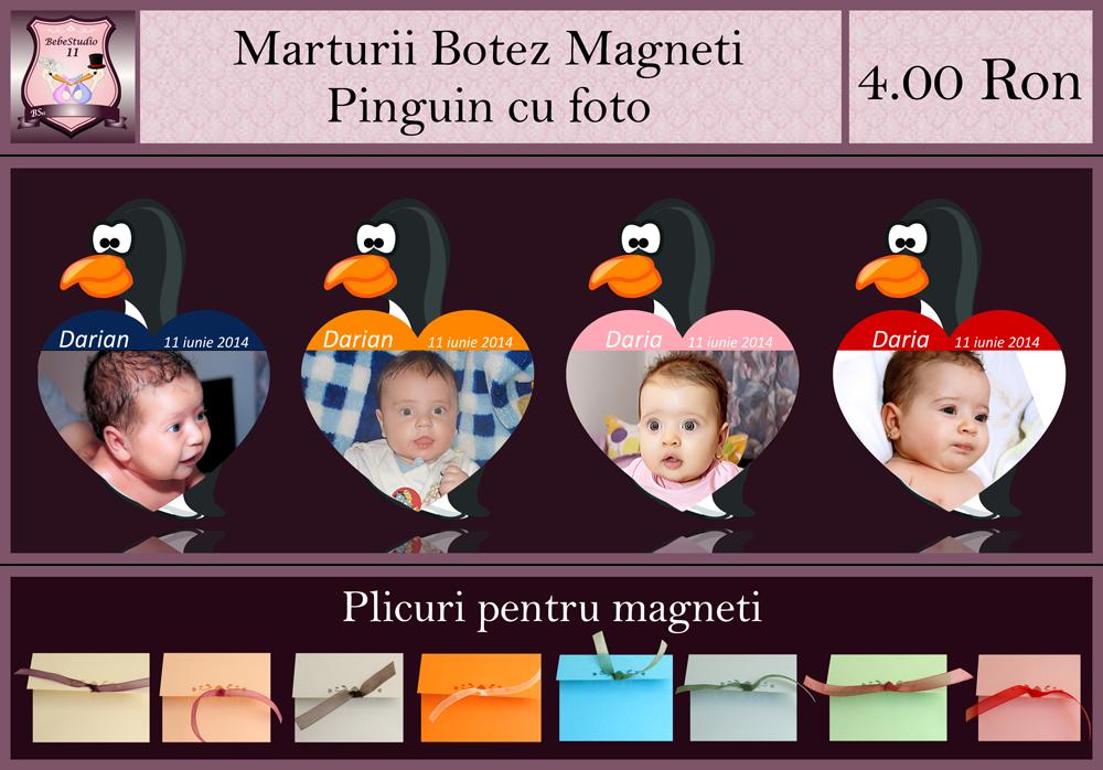 marturii botez magneti pinguin
