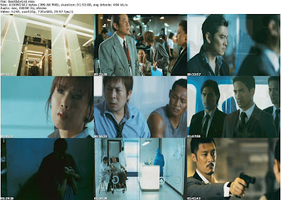 Download My Best Bodyguard (2010) DVDRip