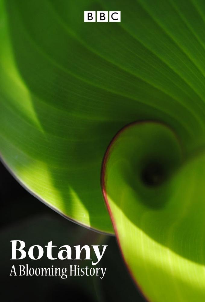 Botaniğin Tarihi, Gelişimi ve Bugünü