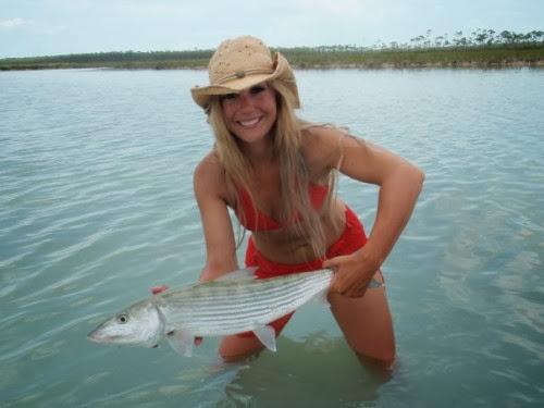 Bonefish atau Ikan Tulang Melesat Seperti Peluru Torpedo