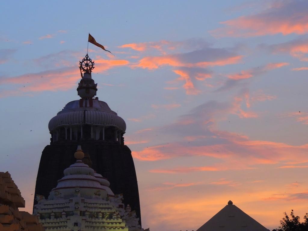 Image result for puri jagannath flag
