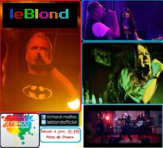 Leblond orgullo gay 2013