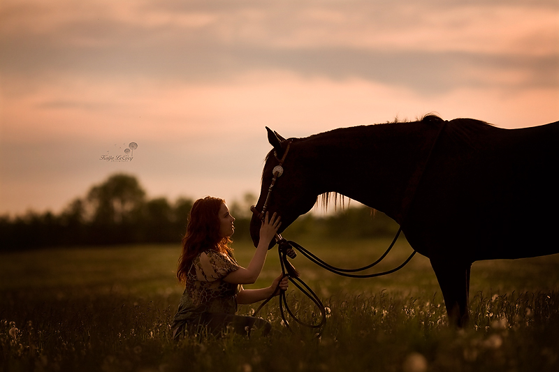 Kaija LeCocq Photography
