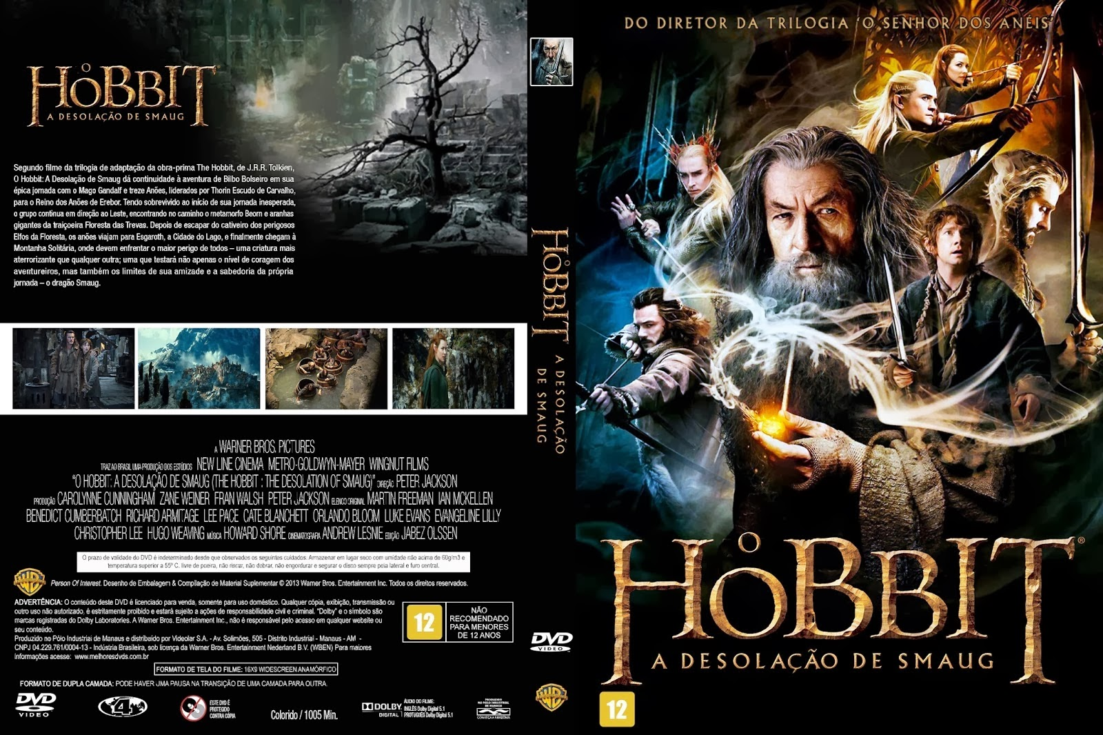 Baixar Filme Capa+O+Hobbit+A+Desola%C3%A7%C3%A3o+De+Smaug O Hobbit A Desolação de Smaug (The Hobbit: The Desolation of Smaug) (2013) DVDScr AVi Dual Áudio torrent