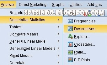 Uji Statistik Deskriptif SPSS