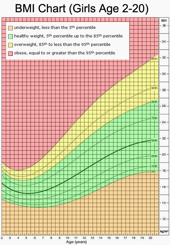 The Green Serviette: Body Mass Index - Calculate Yours!
