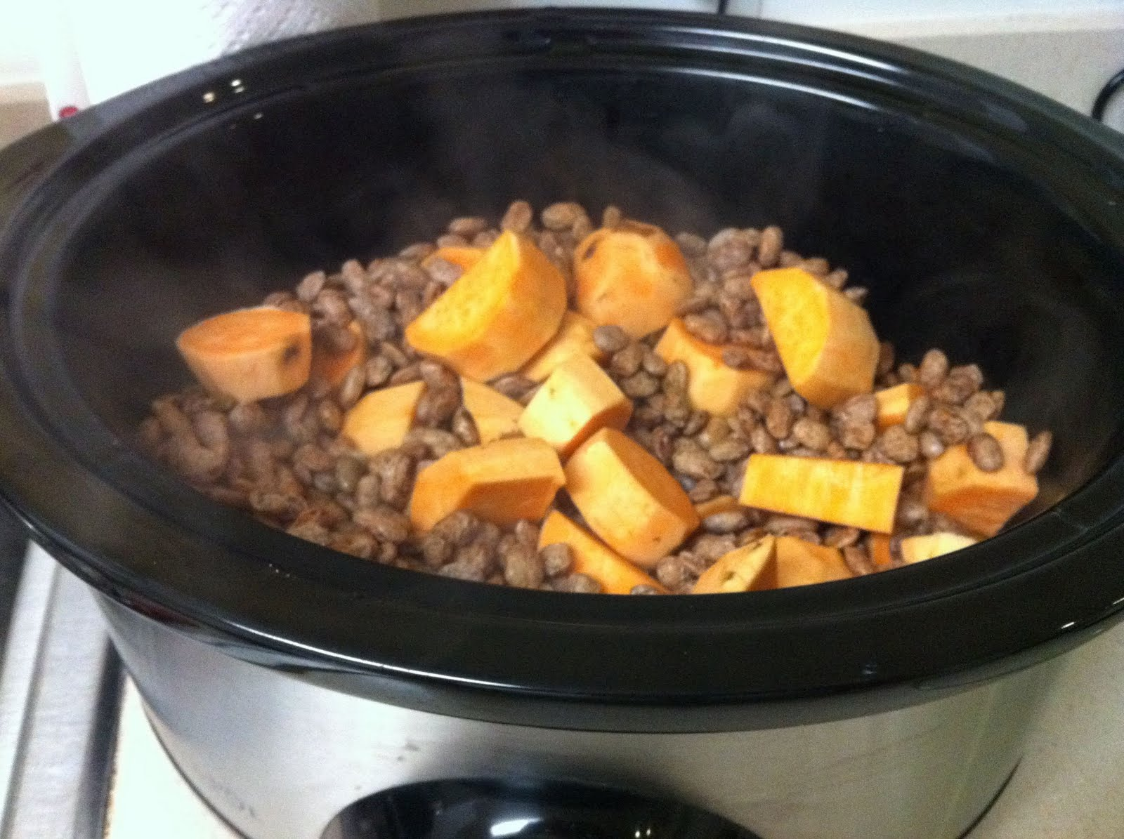 Love like this life on making homemade dog food on making homemade dog food forumfinder
