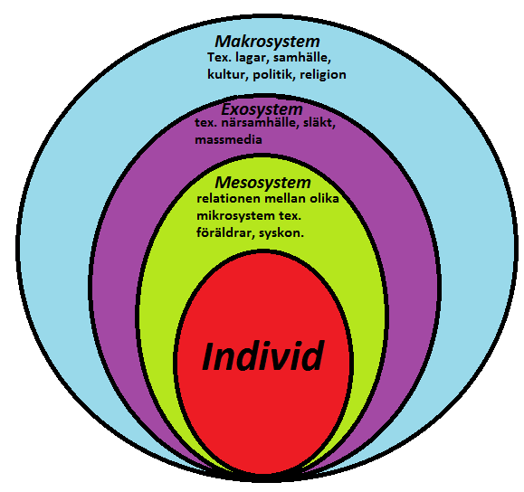 "the bioecological model of human development has four basic systems With an emphasis on a developmental-ecological perspective"" (mattingly et al,  ecology of human development, ecological theory, and child and youth care and key  the settings are embedded as a set of nested structures or systems, with the  4-5) despite bronfenbrenner's prolific writing and the evolution of his ."