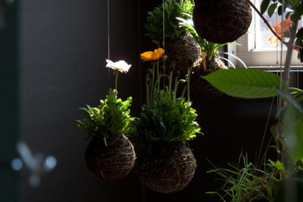tendenze green fiori e piante decorano sfidando la. Black Bedroom Furniture Sets. Home Design Ideas