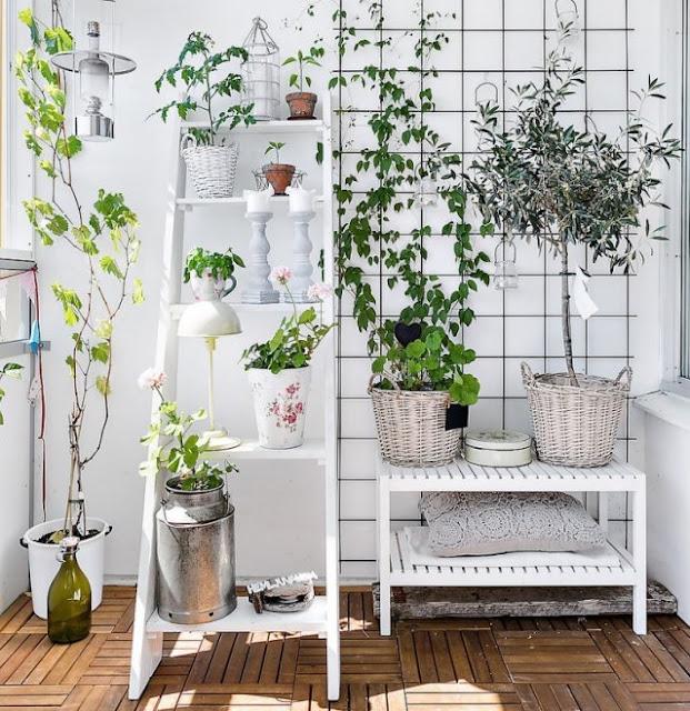 Decora??o - plantas interiores ~ Decora??o e Ideias - casa ...