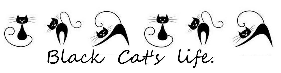 Black Cat's life.