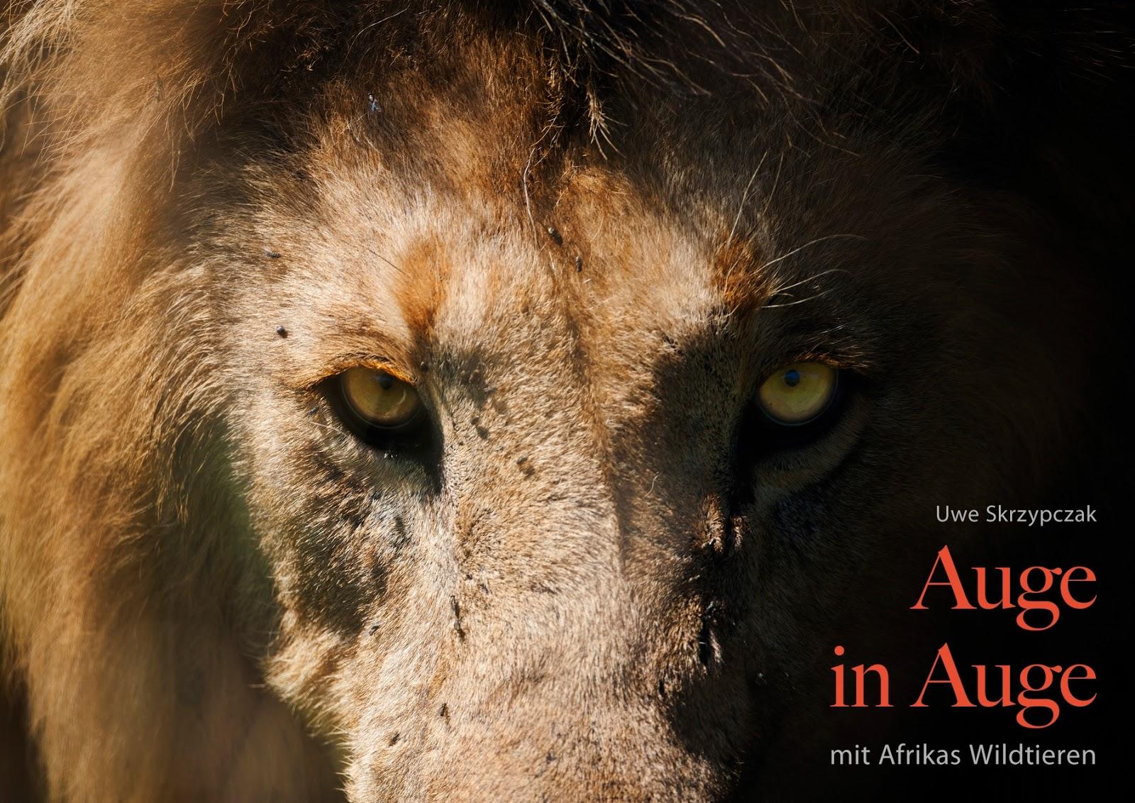 AUGE IN AUGE mit Afrikas Tierwelt. Kalender von Uwe Skrzypczak