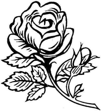 COLOREA TUS DIBUJOS: Dibujo de Rosa para colorear