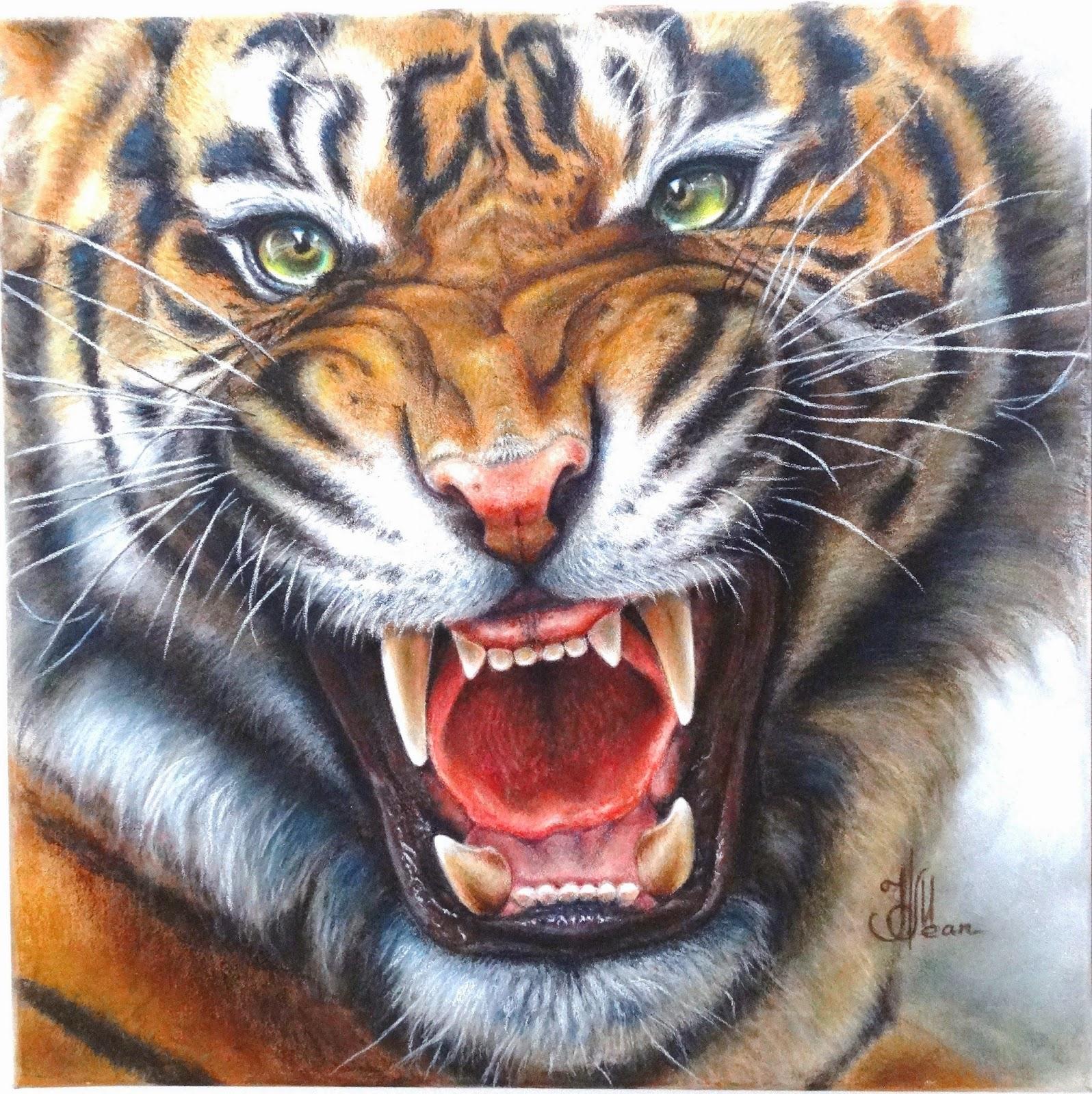 тигр оскал фото