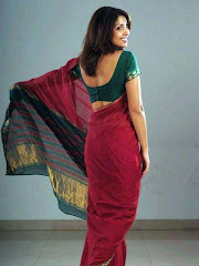 Hot and Erotic Saree pics