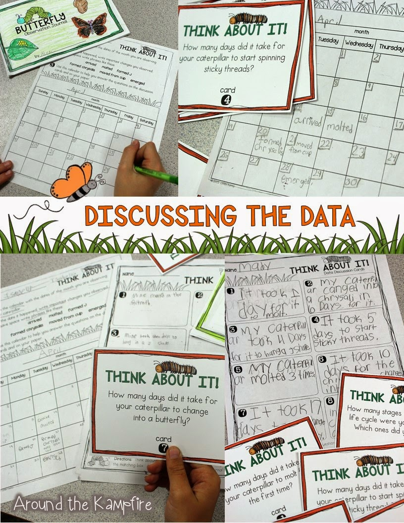 Butterfly Life Cycle Activities, Learning Labs & FREE Printables