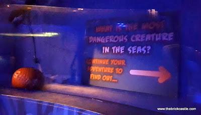 Sealife the seas most dangerous creature