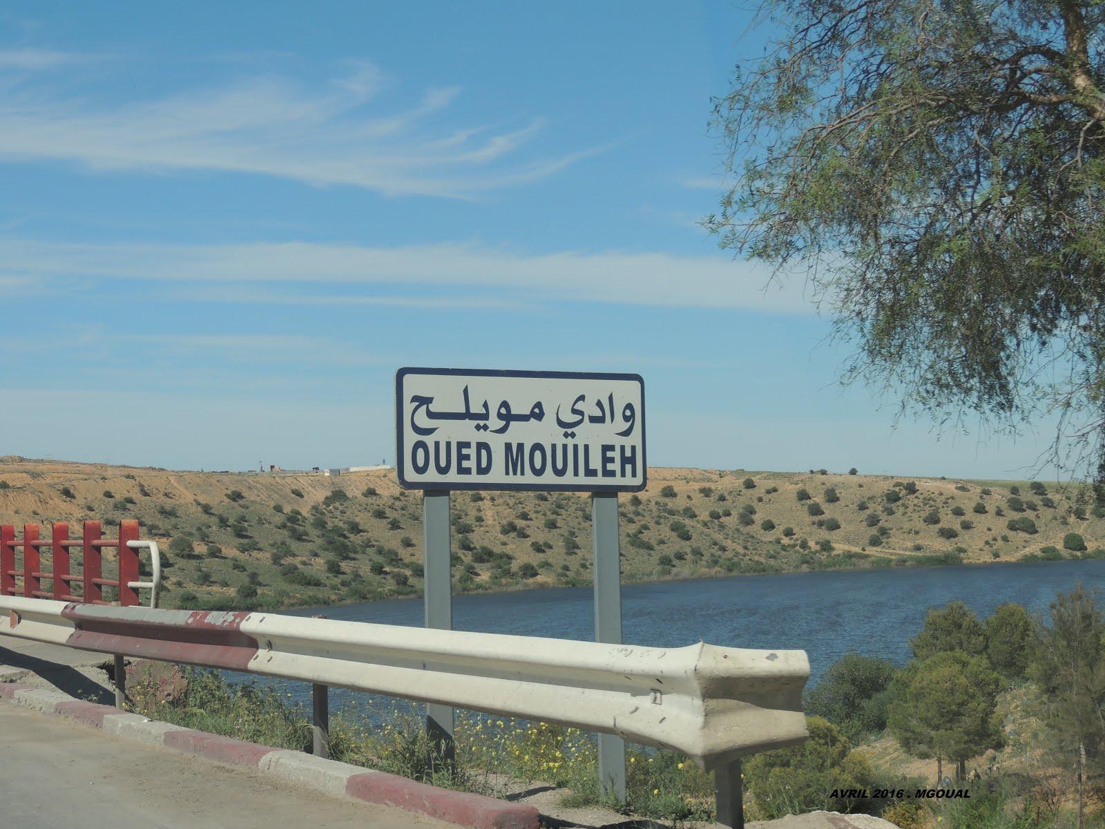 Vous approchez de Hammam Boughrara