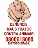 Maus Tratos é crime, denuncie!