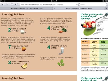 The Miracle Tree Moringa Oleifera Daun Kelor