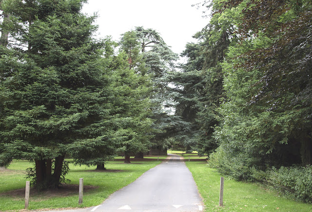 Driveway at High Elms Country Park, 5 August 2013.