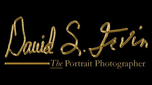 David S. Irvin, The Portrait Photographer