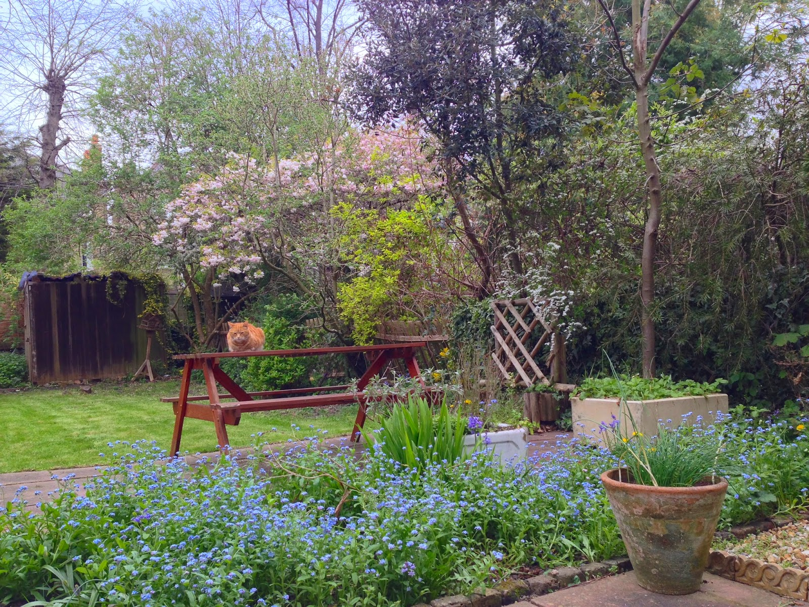 The Gardens, East Dulwich