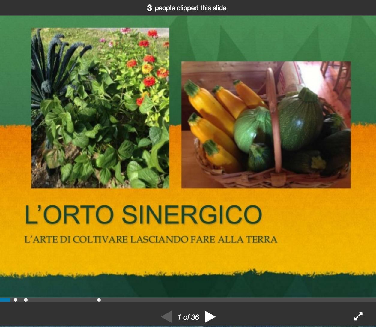L'orto sinergico: l'arte di coltivare lasciando fare la terra (di Marco Garoffolo)