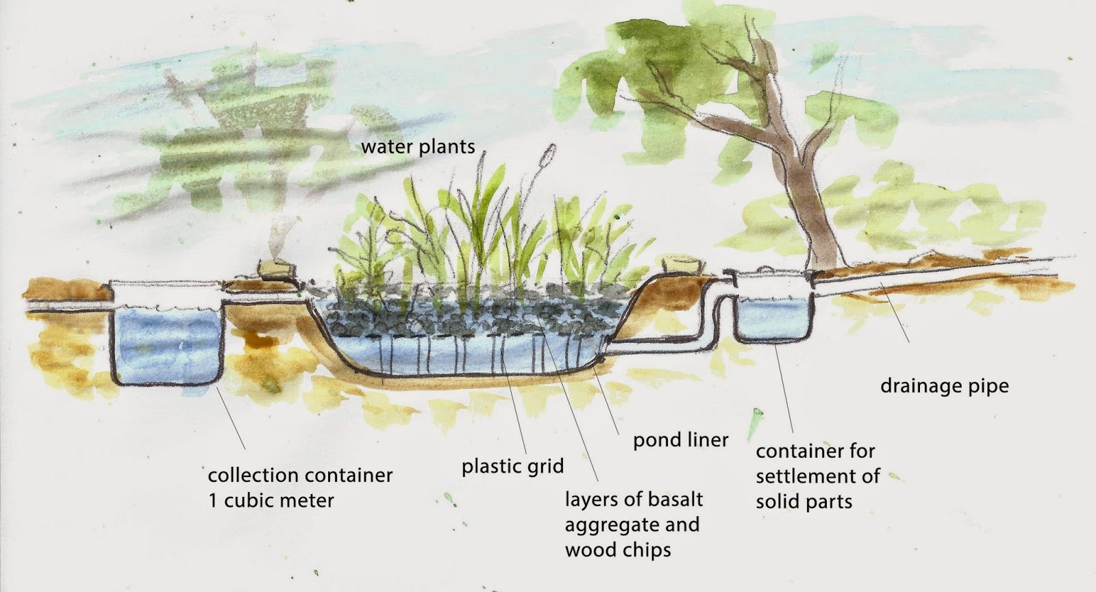how to collect and use grey water