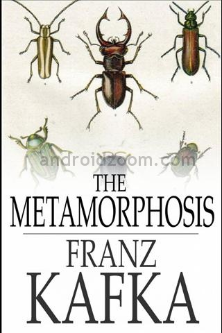 the grotesque in kafkas metamorphosis In franz kafka's novella, the metamorphosis, the protagonist (gregor samsa), is engaged in a struggle against his oppressors, while at the same time he tries to accommodate the very social structure that is ruining his life.