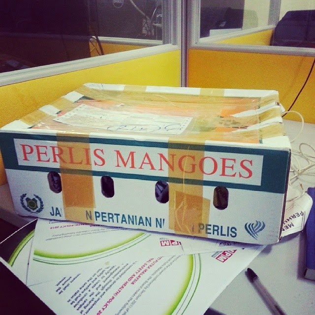 Perlis Mangoes