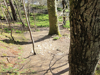 Walk down the hill to get back to Ballater