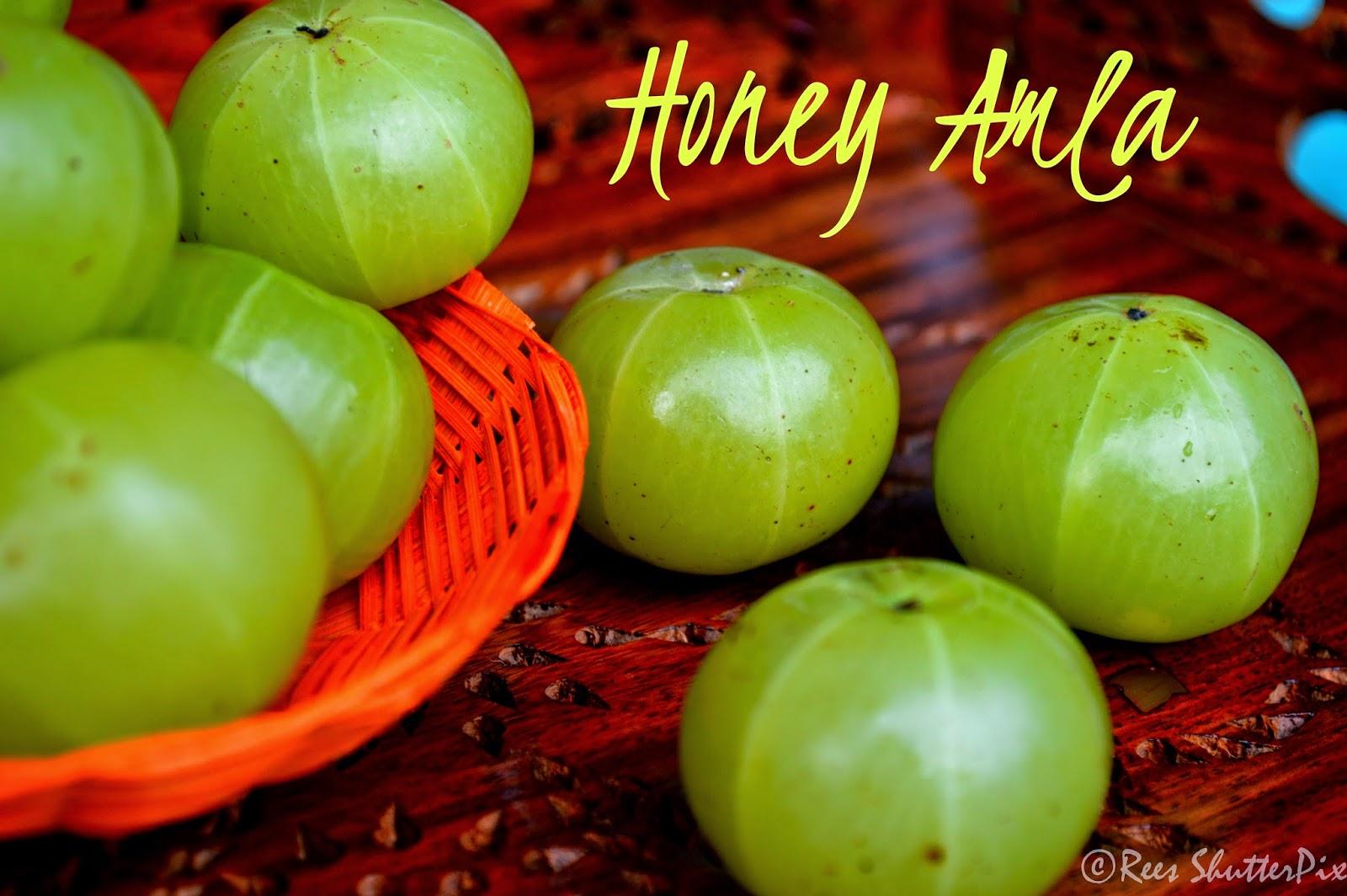 how to make amla honey, amla in honey recipe